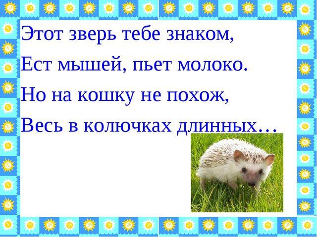 Этот зверь тебе знаком, Ест мышей, пьет молоко. Но на кошку не похож, Весь в...