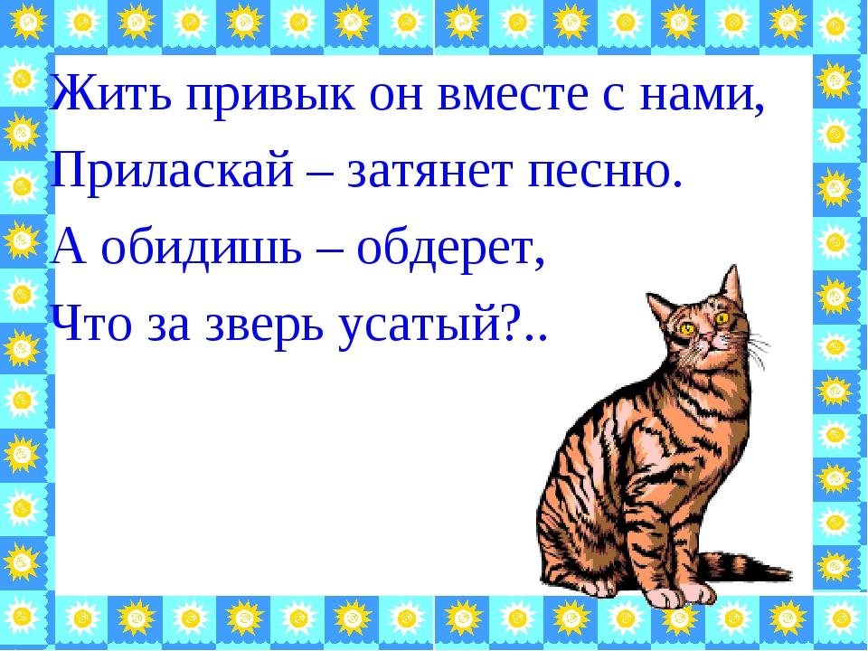 Жить привык он вместе с нами, Приласкай – затянет песню. А обидишь – обдерет,...