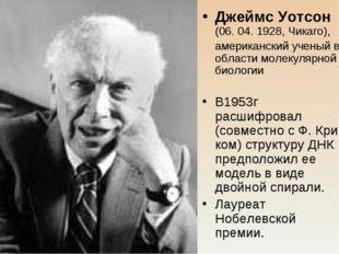 Джеймс Уотсон (06. 04. 1928, Чикаго), американский ученый в области молекуля