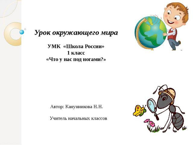 Урок окружающего мира УМК «Школа России» 1 класс «Что у нас под ногами?» Авт...