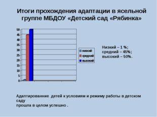 Итоги прохождения адаптации в ясельной группе МБДОУ «Детский сад «Рябинка» Ни