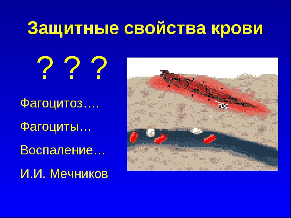 Защитные свойства крови ? ? ? Фагоцитоз…. Фагоциты… Воспаление… И.И. Мечников
