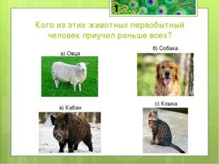 Кого из этих животных первобытный человек приучил раньше всех? а) Овца б) Соб