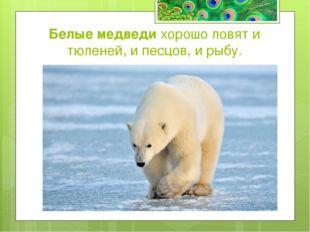 Какие животные славятся великолепной памятью? а) Сайгак б) Слон в) Муравьед с