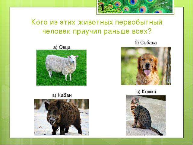 Кого из этих животных первобытный человек приучил раньше всех? а) Овца б) Соб...