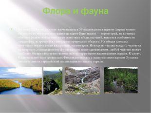 Флора и фауна На июнь 2015 года в стране насчитывается 39национальных парков