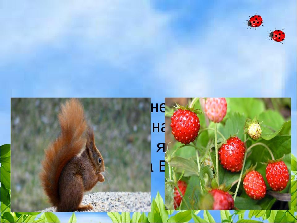 Белочка нашла несколько ягод. После того, как она съела 8 ягод, у неё остало...