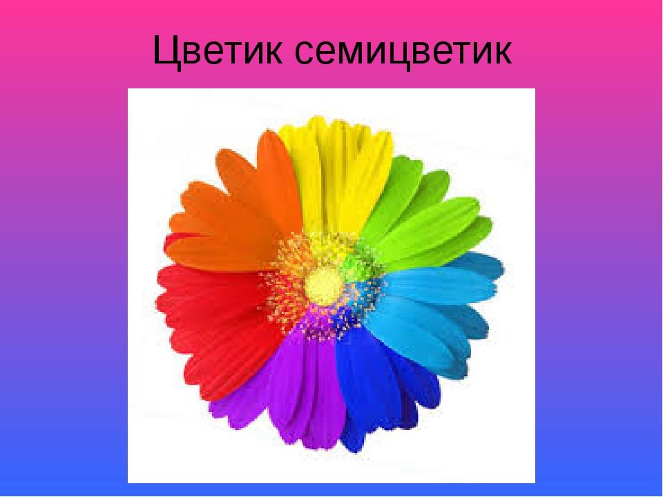 Цветик семицветик