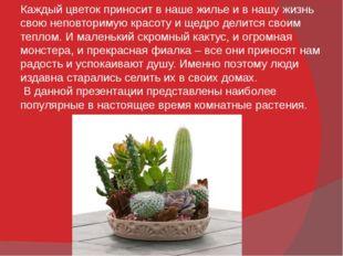Каждый цветок приносит в наше жилье и в нашу жизнь свою неповторимую красоту