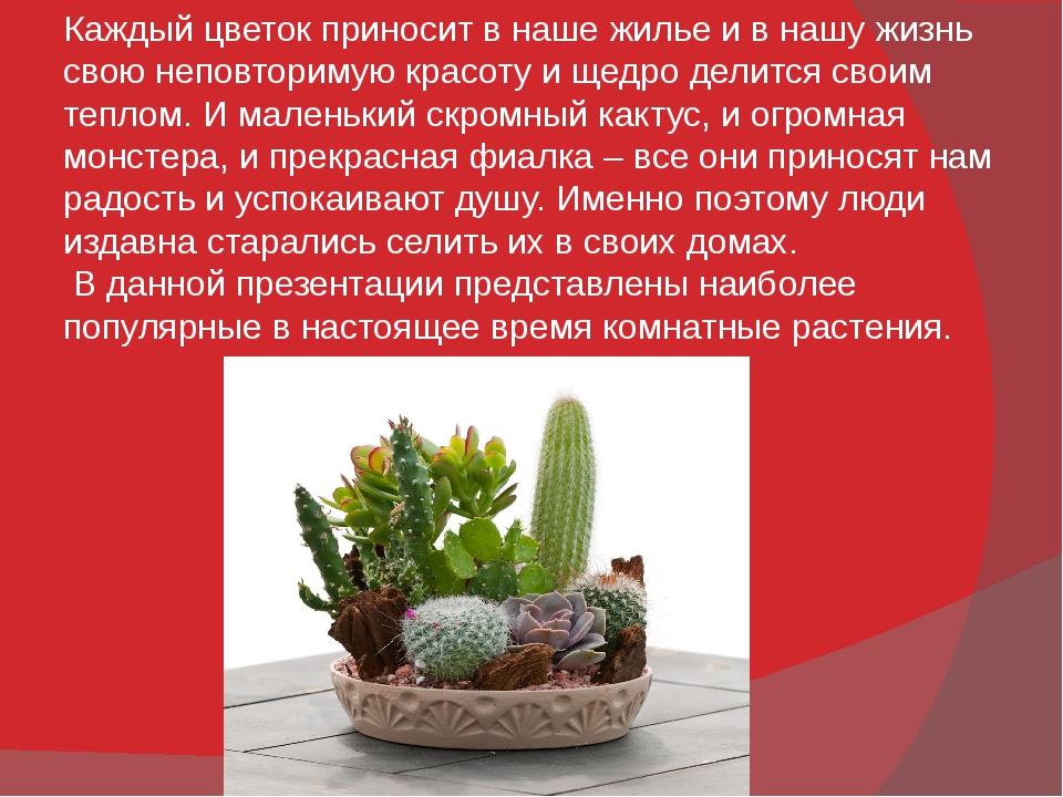 Каждый цветок приносит в наше жилье и в нашу жизнь свою неповторимую красоту...