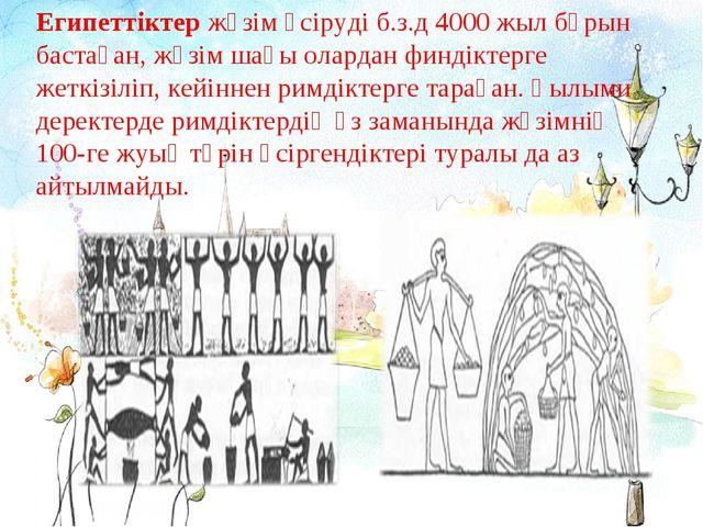 Египеттіктержүзім өсіруді б.з.д 4000 жыл бұрын бастаған, жүзім шағы олардан...