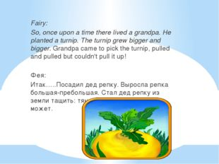Fairy: So, once upon a time there lived a grandpa. He planted a turnip. The
