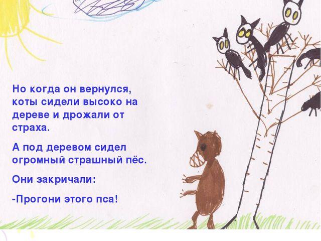 Но когда он вернулся, коты сидели высоко на дереве и дрожали от страха. А под...