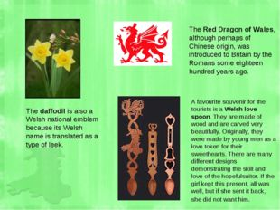 The daffodil is also a Welsh national emblem because its Welsh name is transl