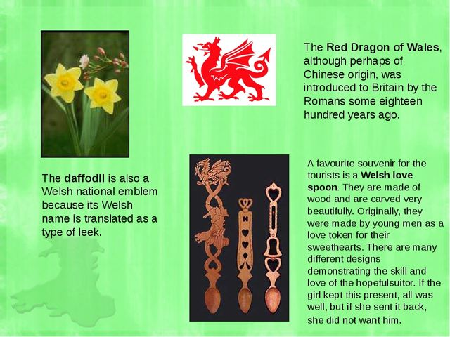 The daffodil is also a Welsh national emblem because its Welsh name is transl...