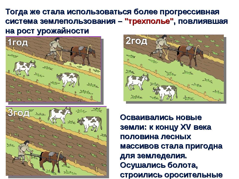 Тогда же стала использоваться более прогрессивная система землепользования –...