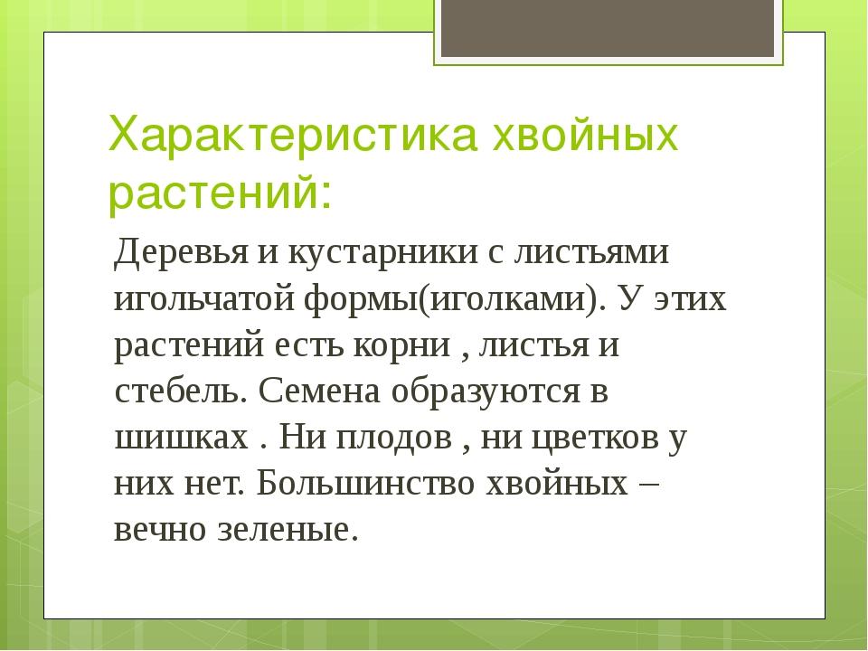 Характеристика хвойных растений: Деревья и кустарники с листьями игольчатой ф...