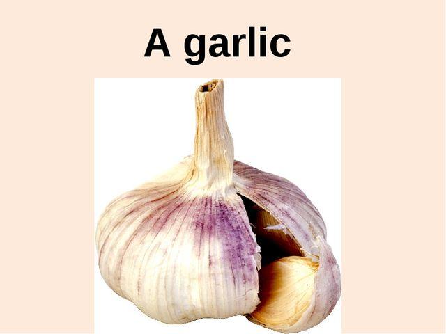 A garlic