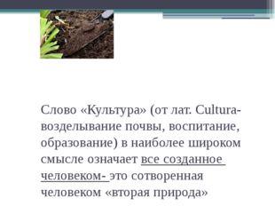 Слово «Культура» (от лат. Cultura- возделывание почвы, воспитание, образовани