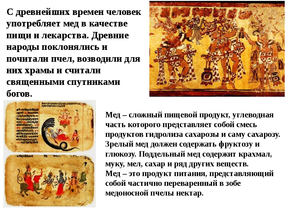 С древнейших времен человек употребляет мед в качестве пищи и лекарства. Древ...