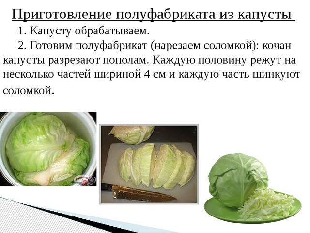 Приготовление полуфабриката из капусты 1. Капусту обрабатываем. 2. Готовим п...