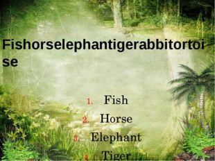 Fishorselephantigerabbitortoise Fish Horse Elephant Tiger Rabbit Tortoise