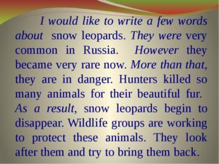 I would like to write a few words about snow leopards. They were very common