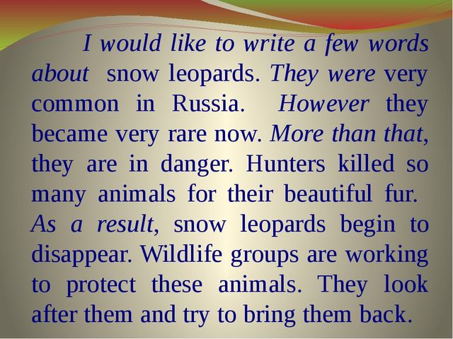 I would like to write a few words about snow leopards. They were very common...