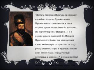 Встреча Гринева и Пугачева происходит случайно, во время бурана в степи. Пуга