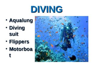 DIVING Aqualung Diving suit Flippers Motorboat
