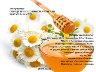 Работу выполнили: Шестаков М.Е., Новожилова Т.А., 10 класс МБОУ г. Астрахани