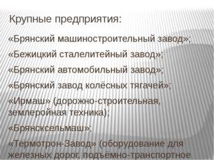 Крупные предприятия:  «Брянский машиностроительный завод»; «Бежицкий сталел