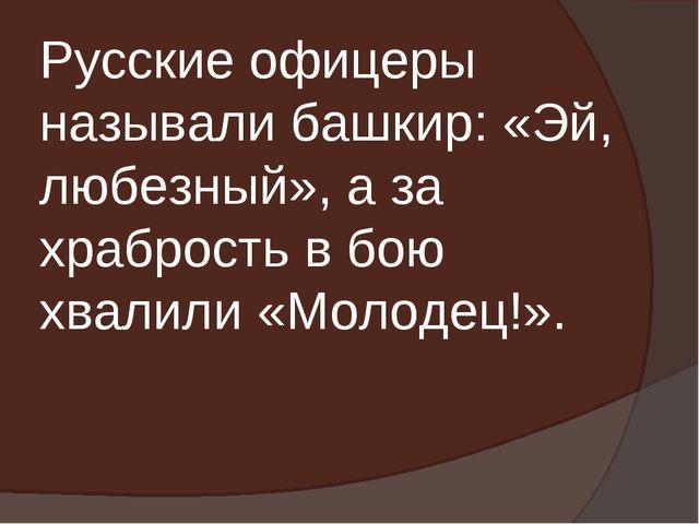 Русские офицеры называли башкир: «Эй, любезный», а за храбрость в бою хвалили...