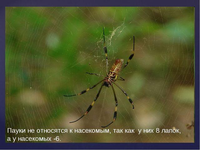 Пауки не относятся к насекомым, так как у них 8 лапок, а у насекомых -6.