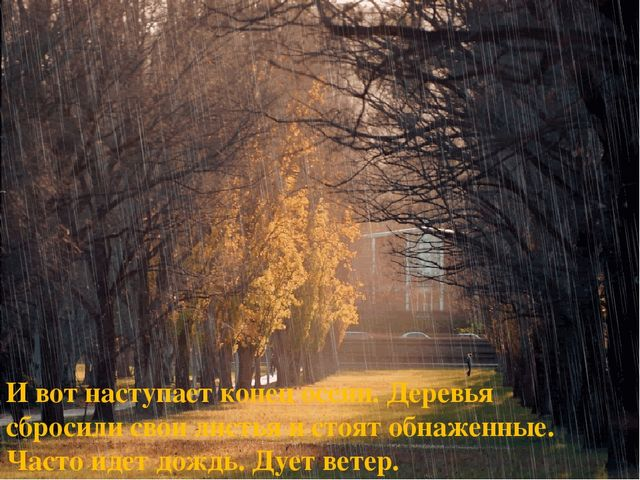 И вот наступает конец осени. Деревья сбросили свои листья и стоят обнаженные....