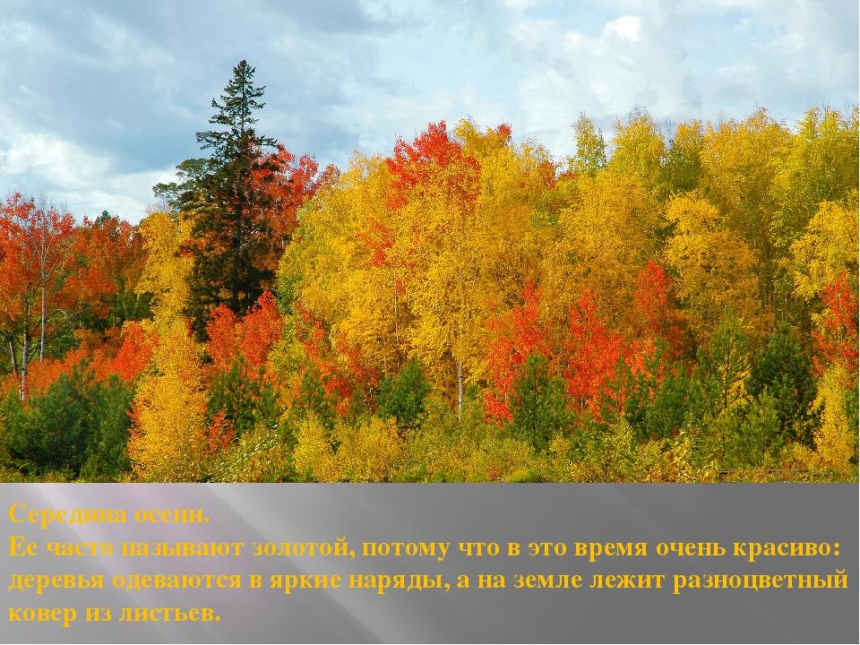 Середина осени. Ее часто называют золотой, потому что в это время очень краси...