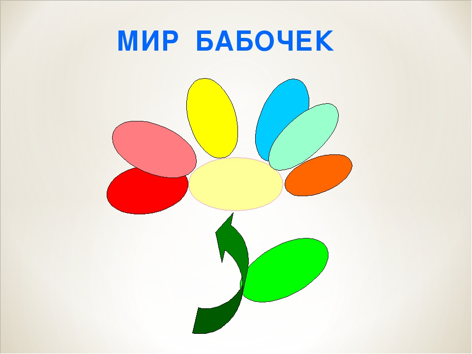 МИР БАБОЧЕК
