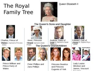 The Royal Family Tree Queen Elizabeth II The Queen's Sons and Daughter Charle