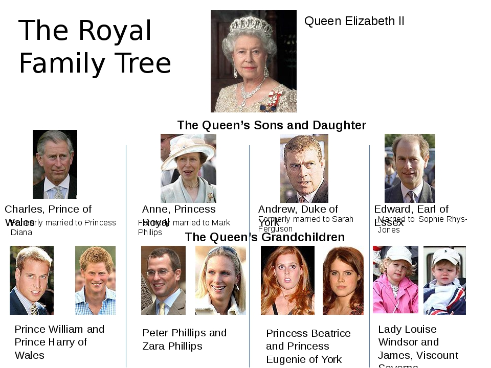 The Royal Family Tree Queen Elizabeth II The Queen's Sons and Daughter Charle...