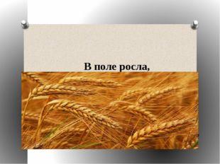 В поле росла, Под жерновым была Из печки на стол Караваем пришла.