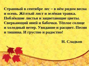 Странный в сентябре лес – в нём рядом весна и осень. Жёлтый лист и зелёная тр