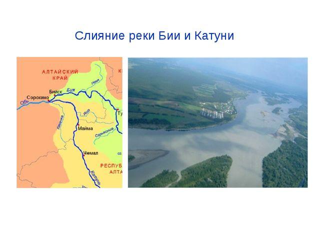 Слияние реки Бии и Катуни