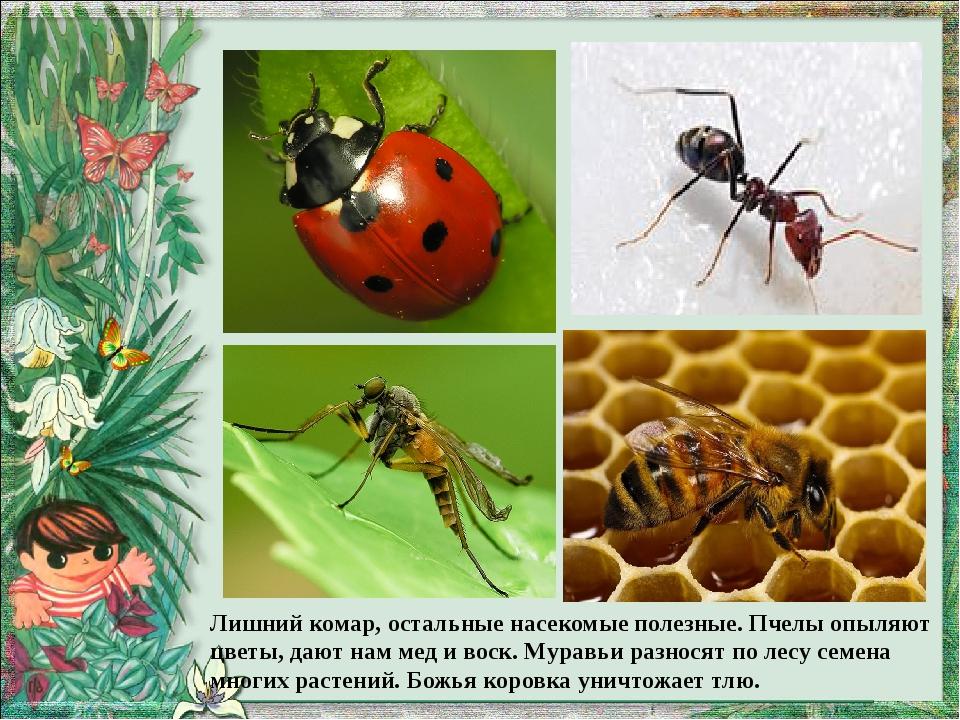 вредные и полезные насекомые с картинками своим детям она