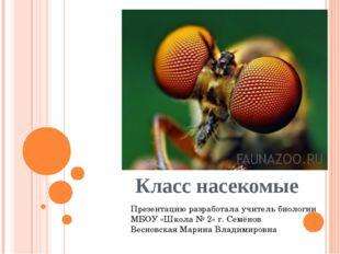 Класс насекомые Презентацию разработала учитель биологии МБОУ «Школа № 2» г.