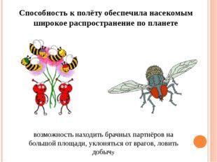 Способность к полёту обеспечила насекомым широкое распространение по планете