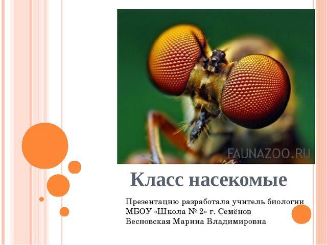 Класс насекомые Презентацию разработала учитель биологии МБОУ «Школа № 2» г....