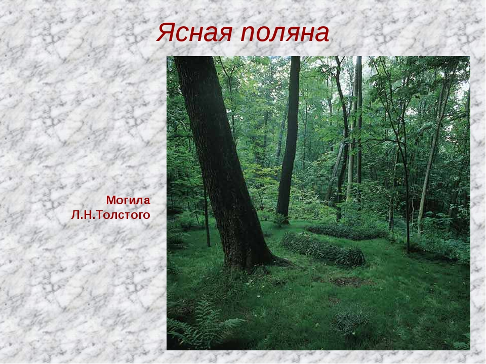 Ясная поляна Могила Л.Н.Толстого