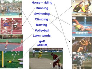Horse – riding Running Swimming Climbing Rowing Volleyball Lawn tennis golf C