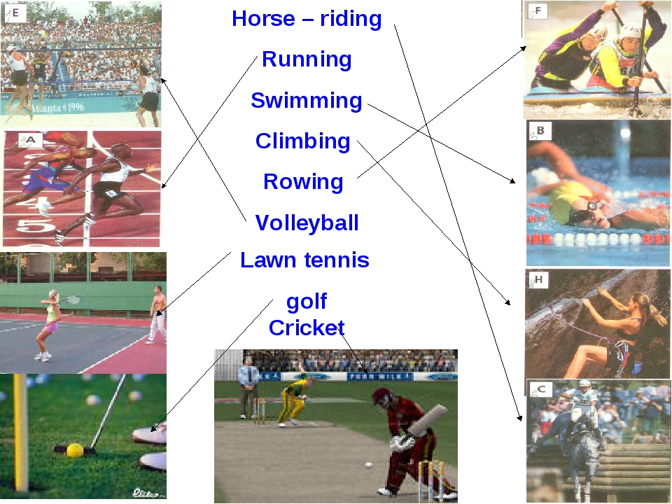 Horse – riding Running Swimming Climbing Rowing Volleyball Lawn tennis golf C...