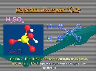 Строение молекулы H2SO4 H2SO4   Связь О-Н в H2SO4 явля